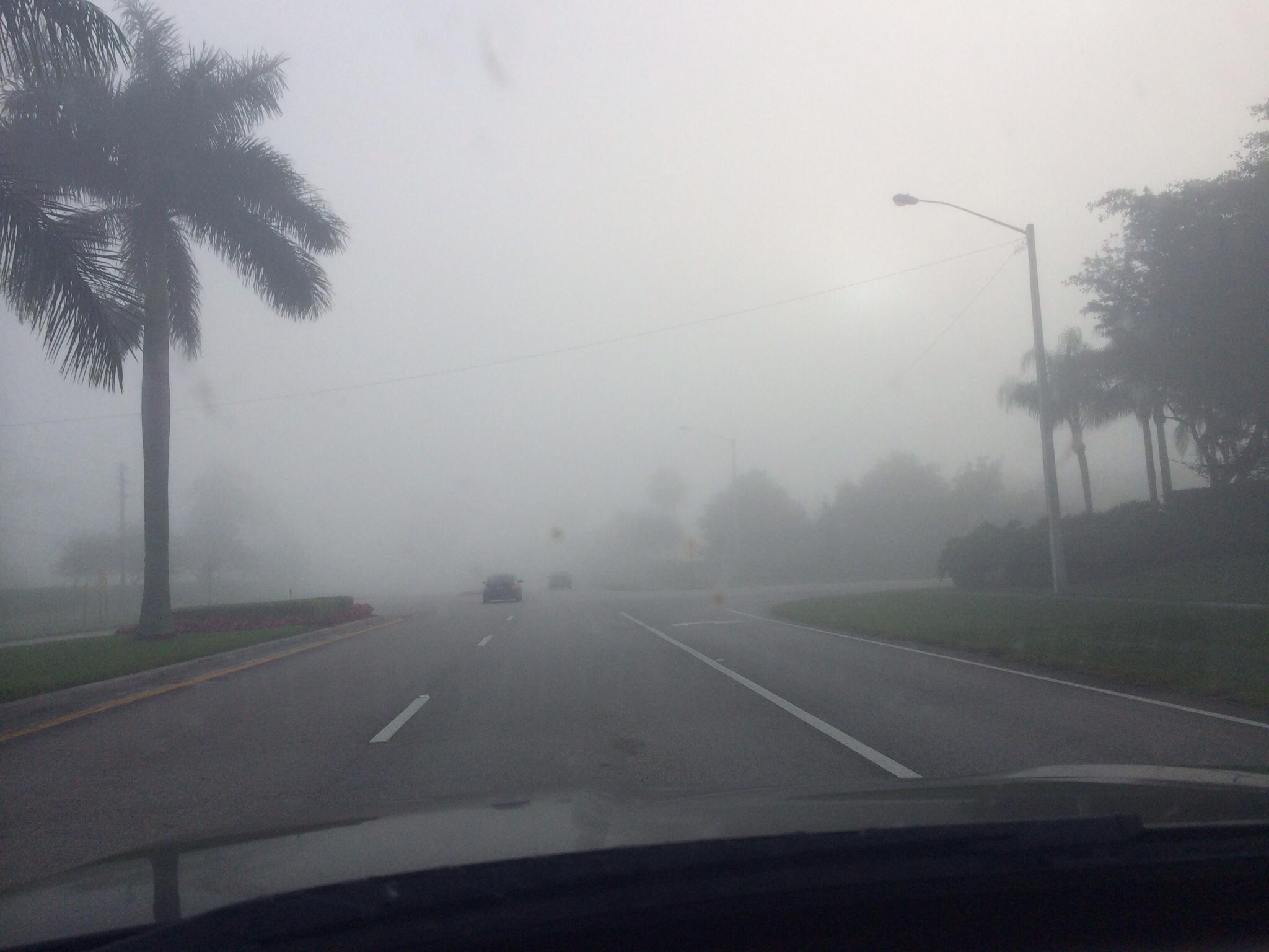 Boca fog