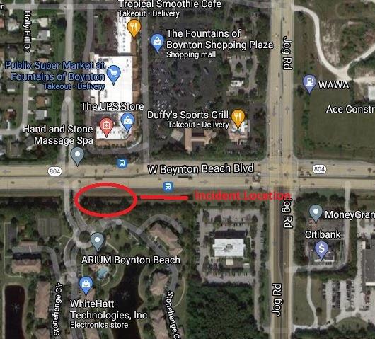 Juvenile Assaulted Palm Beach County
